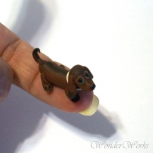 Doxie Pup